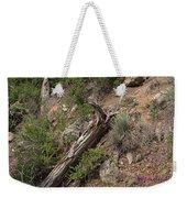 Zoo Landscape Weekender Tote Bag