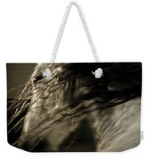 Americano 15 Weekender Tote Bag by Catherine Sobredo
