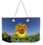 Bee On Blooming Sunflower Weekender Tote Bag
