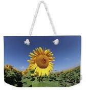 Bee On Blooming Sunflower Weekender Tote Bag