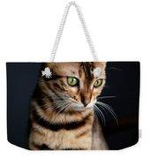 Bengal Cat Portrait Weekender Tote Bag