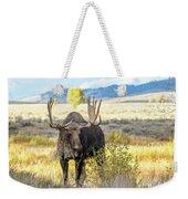 Bull Moose Weekender Tote Bag by Michael Chatt