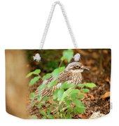 Bush Stone-curlew Weekender Tote Bag