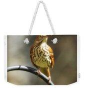 Georgia State Bird - Brown Thrasher Weekender Tote Bag