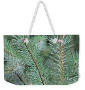 Moist Pine Tree Leaves With Water Droplets. Weekender Tote Bag