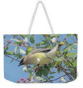 Ready For Take Off Weekender Tote Bag by Sally Sperry