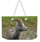 Stone's Sheep Weekender Tote Bag