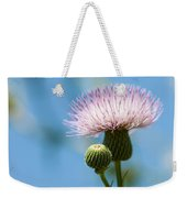 Thistle With Blue Sky Background Weekender Tote Bag