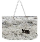 W18 Weekender Tote Bag by Joshua Able's Wildlife