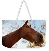 Horse In A Countryside Weekender Tote Bag