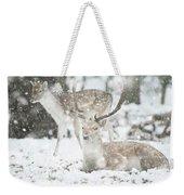 Beautiful Image Of Fallow Deer In Snow Winter Landscape In Heavy Weekender Tote Bag