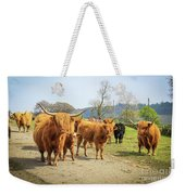 Highland Cattle  Weekender Tote Bag