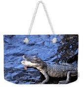 Little Gator Weekender Tote Bag