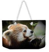 Red Panda Weekender Tote Bag