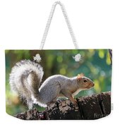 Squirrel Friend Weekender Tote Bag