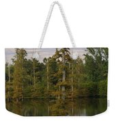 Tennesse Cypress In Wetland  Weekender Tote Bag