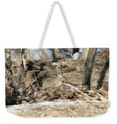 Hidden In The Trees Weekender Tote Bag