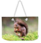 Red Squirrel Sciurus Vulgaris Weekender Tote Bag