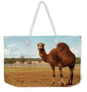 Large Beautiful Camel Weekender Tote Bag