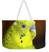 Portrait Of Budgie Birds Weekender Tote Bag