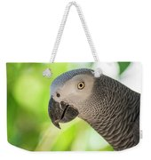 African Grey Parrot Weekender Tote Bag by Rob D Imagery