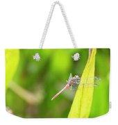 Small Beautiful Dragonfly Weekender Tote Bag