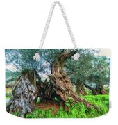 Old Olive Tree Weekender Tote Bag