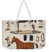A Chromolithograph Of Horses With Antique Horseback Riding Equipments   1890  Weekender Tote Bag