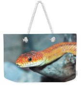 A Close Up Of A Ground Snake Weekender Tote Bag