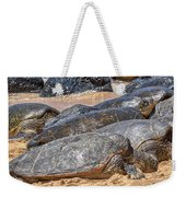 A Couple Of Turtles Stopped By Weekender Tote Bag