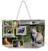 A Variety Of Cats Weekender Tote Bag