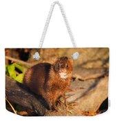 Adorable Mink Weekender Tote Bag