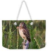 Adult Burrowing Owl Weekender Tote Bag