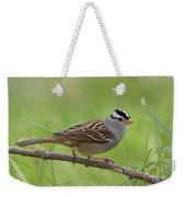 adult White-crowned Sparrow Weekender Tote Bag