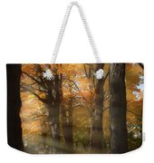 Afternoon Light In Fall Colors Of New England Weekender Tote Bag