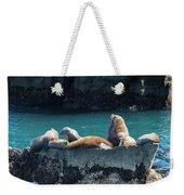 Alaska Steller Sea Lions Weekender Tote Bag