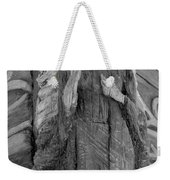 Albatross Fine Art Masthead Weekender Tote Bag