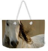 Americano 1 Weekender Tote Bag by Catherine Sobredo