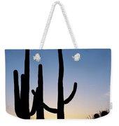 Arizona Cacti, 2008 Weekender Tote Bag