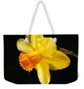 Sunny Yellows Of A Spring Daffodil  Weekender Tote Bag