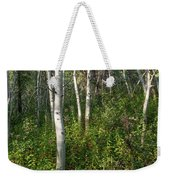 Aspen Solitude Weekender Tote Bag