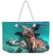 Australian Sea Lion Pair, Coral Coast Weekender Tote Bag