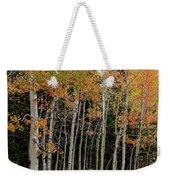 Autumn As The Seasons Change Weekender Tote Bag