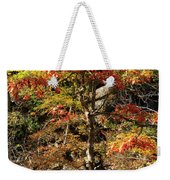 Autumn Color In Smoky Mountains National Park Weekender Tote Bag