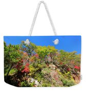 Autumn Color On Newfound Gap Road In Smoky Mountains National Park Weekender Tote Bag