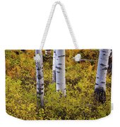 Autumn Contrasts Weekender Tote Bag by John De Bord