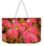 Autumnal Hues Weekender Tote Bag
