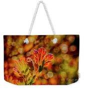 Autumn's Glow 2 Weekender Tote Bag