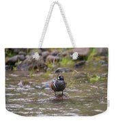 B63 Weekender Tote Bag by Joshua Able's Wildlife