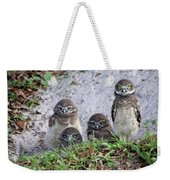 Baby Burrowing Owls Posing Weekender Tote Bag